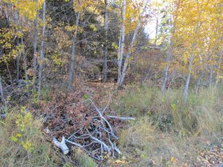 Photo 2: Lot 157-159 Third Avenue South in Kenora: Vacant Land for sale : MLS®# TB202564