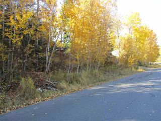 Photo 6: Lot 157-159 Third Avenue South in Kenora: Vacant Land for sale : MLS®# TB202564
