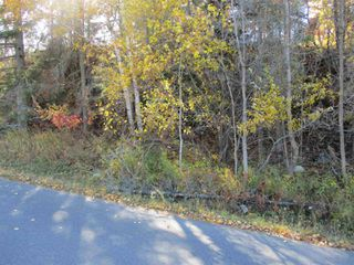 Photo 9: Lot 157-159 Third Avenue South in Kenora: Vacant Land for sale : MLS®# TB202564