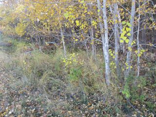Photo 1: Lot 157-159 Third Avenue South in Kenora: Vacant Land for sale : MLS®# TB202564