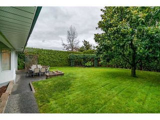 """Photo 34: 4668 218A Street in Langley: Murrayville House for sale in """"Murrayville"""" : MLS®# R2519813"""