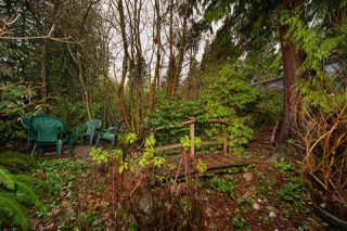 Photo 10: 1449 COLEMAN Street in North Vancouver: Lynn Valley House for sale : MLS®# R2526009