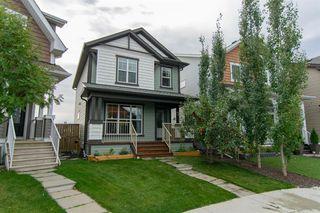 Main Photo: 157 AUBURN CREST Green SE in Calgary: Auburn Bay Detached for sale : MLS®# A1058760
