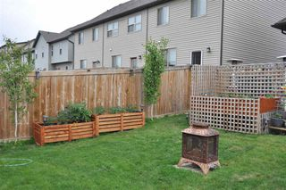 Photo 19: 311 Pioneer Road: Spruce Grove House Half Duplex for sale : MLS®# E4204335