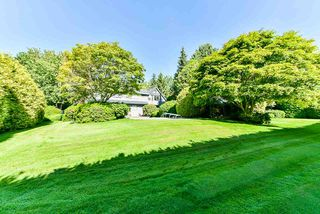 Photo 23: 2022 181 Street in Surrey: Hazelmere House for sale (South Surrey White Rock)  : MLS®# R2503177