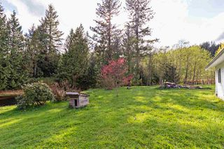 Photo 13: 32286 KING Avenue in Mission: Mission BC House for sale : MLS®# R2453074