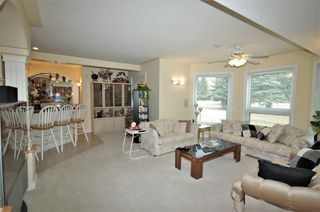 Photo 25: 9461 Spruce Valley Road: Rural Parkland County House for sale : MLS®# E4202078