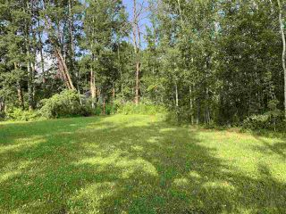 Photo 3: #105 54500 Lac Ste Anne Tr.: Rural Sturgeon County Rural Land/Vacant Lot for sale : MLS®# E4165969