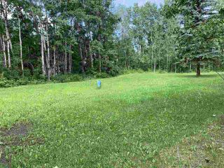 Photo 5: #105 54500 Lac Ste Anne Tr.: Rural Sturgeon County Rural Land/Vacant Lot for sale : MLS®# E4165969