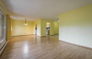 Photo 6: #309 5520 RIVERBEND Road in Edmonton: Zone 14 Condo for sale : MLS®# E4170585