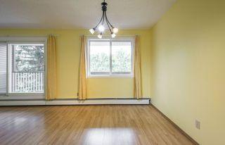 Photo 9: #309 5520 RIVERBEND Road in Edmonton: Zone 14 Condo for sale : MLS®# E4170585