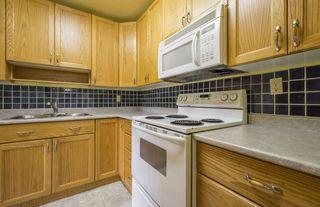 Photo 12: #309 5520 RIVERBEND Road in Edmonton: Zone 14 Condo for sale : MLS®# E4170585