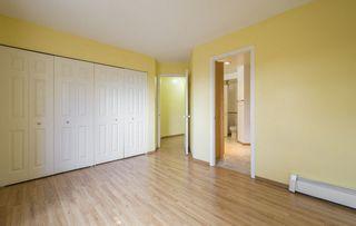 Photo 23: #309 5520 RIVERBEND Road in Edmonton: Zone 14 Condo for sale : MLS®# E4170585