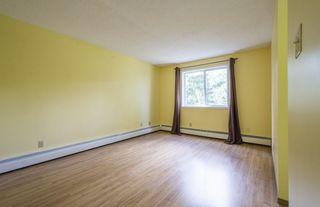 Photo 16: #309 5520 RIVERBEND Road in Edmonton: Zone 14 Condo for sale : MLS®# E4170585