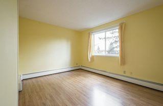 Photo 21: #309 5520 RIVERBEND Road in Edmonton: Zone 14 Condo for sale : MLS®# E4170585