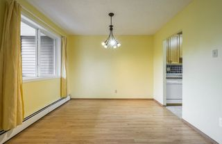 Photo 8: #309 5520 RIVERBEND Road in Edmonton: Zone 14 Condo for sale : MLS®# E4170585