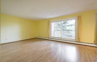 Photo 3: #309 5520 RIVERBEND Road in Edmonton: Zone 14 Condo for sale : MLS®# E4170585