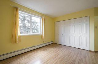 Photo 22: #309 5520 RIVERBEND Road in Edmonton: Zone 14 Condo for sale : MLS®# E4170585