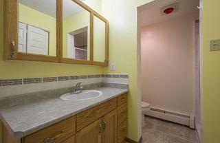 Photo 19: #309 5520 RIVERBEND Road in Edmonton: Zone 14 Condo for sale : MLS®# E4170585