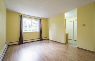 Photo 17: #309 5520 RIVERBEND Road in Edmonton: Zone 14 Condo for sale : MLS®# E4170585