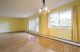 Photo 10: #309 5520 RIVERBEND Road in Edmonton: Zone 14 Condo for sale : MLS®# E4170585