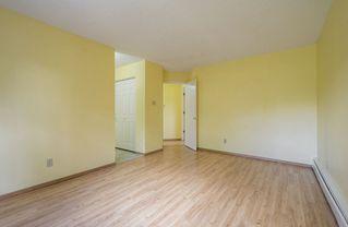 Photo 18: #309 5520 RIVERBEND Road in Edmonton: Zone 14 Condo for sale : MLS®# E4170585