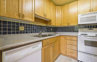 Photo 15: #309 5520 RIVERBEND Road in Edmonton: Zone 14 Condo for sale : MLS®# E4170585