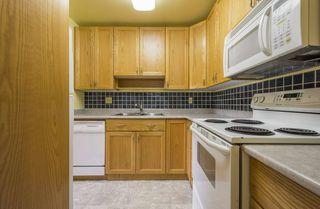 Photo 11: #309 5520 RIVERBEND Road in Edmonton: Zone 14 Condo for sale : MLS®# E4170585