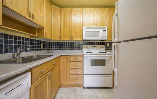 Photo 14: #309 5520 RIVERBEND Road in Edmonton: Zone 14 Condo for sale : MLS®# E4170585