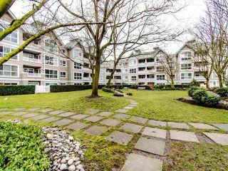 """Photo 17: 219 5900 DOVER Crescent in Richmond: Riverdale RI Condo for sale in """"The Hamptons"""" : MLS®# R2429773"""