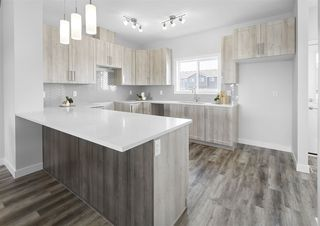 Photo 12: 16615 30 Avenue in Edmonton: Zone 56 House for sale : MLS®# E4200889