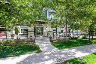 Photo 2: 204 8525 91 Street in Edmonton: Zone 18 Condo for sale : MLS®# E4202515