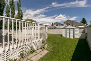 Photo 8: 823 114 St NW in Edmonton: Zone 16 House for sale : MLS®# E4203165