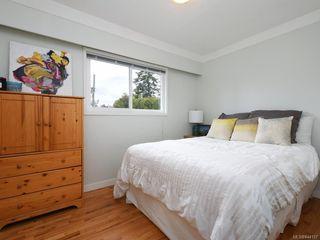 Photo 11: 679 Vanalman Ave in Saanich: SW Northridge House for sale (Saanich West)  : MLS®# 844157