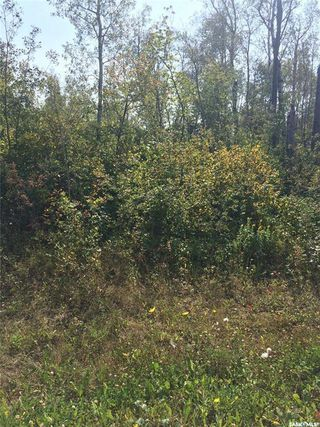 Photo 2: 204 Dixon View in Dixon Lake: Lot/Land for sale : MLS®# SK827248