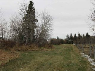 Photo 50: 60320 RR205: Rural Thorhild County House for sale : MLS®# E4178593