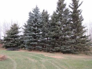 Photo 41: 60320 RR205: Rural Thorhild County House for sale : MLS®# E4178593