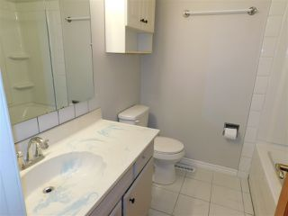 Photo 16: 14231 117 Street in Edmonton: Zone 27 House for sale : MLS®# E4180229