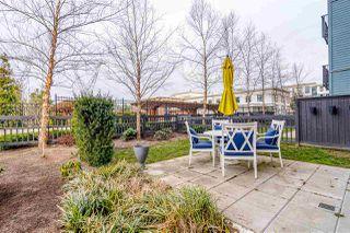 """Photo 14: 109 15168 33 Avenue in Surrey: Morgan Creek Condo for sale in """"Harvard Gardens - Elgin House"""" (South Surrey White Rock)  : MLS®# R2446015"""
