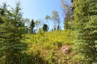 """Photo 19: LOT 1 HISLOP Road in Smithers: Smithers - Rural Land for sale in """"Hislop Road Area"""" (Smithers And Area (Zone 54))  : MLS®# R2491414"""