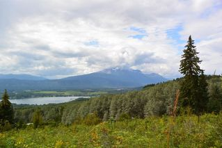 """Photo 3: LOT 1 HISLOP Road in Smithers: Smithers - Rural Land for sale in """"Hislop Road Area"""" (Smithers And Area (Zone 54))  : MLS®# R2491414"""