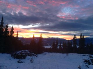 """Photo 38: LOT 1 HISLOP Road in Smithers: Smithers - Rural Land for sale in """"Hislop Road Area"""" (Smithers And Area (Zone 54))  : MLS®# R2491414"""
