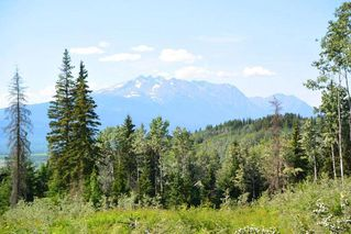 """Photo 24: LOT 1 HISLOP Road in Smithers: Smithers - Rural Land for sale in """"Hislop Road Area"""" (Smithers And Area (Zone 54))  : MLS®# R2491414"""