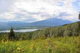 """Photo 20: LOT 1 HISLOP Road in Smithers: Smithers - Rural Land for sale in """"Hislop Road Area"""" (Smithers And Area (Zone 54))  : MLS®# R2491414"""