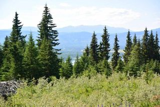 """Photo 23: LOT 1 HISLOP Road in Smithers: Smithers - Rural Land for sale in """"Hislop Road Area"""" (Smithers And Area (Zone 54))  : MLS®# R2491414"""