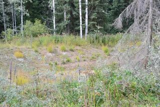 """Photo 25: LOT 1 HISLOP Road in Smithers: Smithers - Rural Land for sale in """"Hislop Road Area"""" (Smithers And Area (Zone 54))  : MLS®# R2491414"""