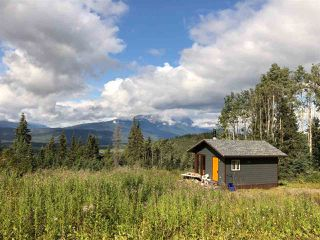 """Photo 4: LOT 1 HISLOP Road in Smithers: Smithers - Rural Land for sale in """"Hislop Road Area"""" (Smithers And Area (Zone 54))  : MLS®# R2491414"""