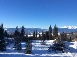 """Photo 40: LOT 1 HISLOP Road in Smithers: Smithers - Rural Land for sale in """"Hislop Road Area"""" (Smithers And Area (Zone 54))  : MLS®# R2491414"""