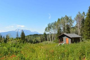 """Photo 31: LOT 1 HISLOP Road in Smithers: Smithers - Rural Land for sale in """"Hislop Road Area"""" (Smithers And Area (Zone 54))  : MLS®# R2491414"""