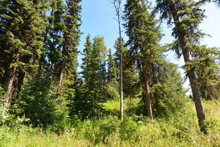 """Photo 22: LOT 1 HISLOP Road in Smithers: Smithers - Rural Land for sale in """"Hislop Road Area"""" (Smithers And Area (Zone 54))  : MLS®# R2491414"""